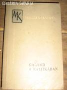 Mikszáth Kálmán:Galamb a kalitkában