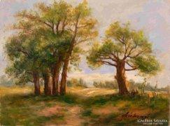Széchenyi Istán - Őrködő fák