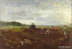 Friedrich Gábor : Krumplivetők