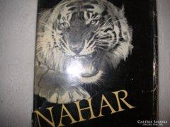 Széchenyi Zsigmond: Nahar