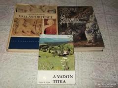 Történelmi könyv csomag 3 db .