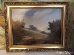 Tájkép,olajfestmény kortárs festőművésztől,Korbely Istvántól