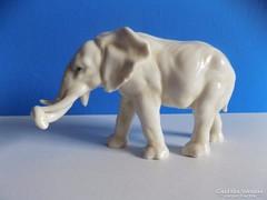 ENS Elefánt!