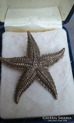 Régi markazitokkal foglalt tengeri csillag bross
