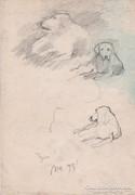 Tanyasi kutyák rajz