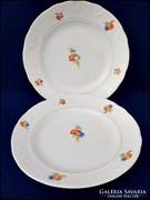 Régi búzavirágos Gránit tányér 2 db.