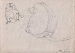 Állatkerti rajz páviánok