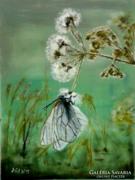 Mód Ildikó : Pillangó hatás