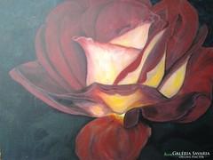 Bordó rózsa c. festmény , csendélet