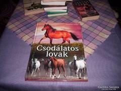 Konyhás István.Csodálatos lovak