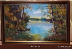 ---Tisza part -Eredeti kortárs festmény- új kerettel