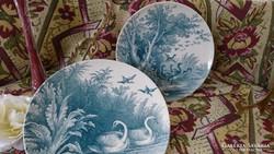 Sarreguemines fali, gyüjtői óriás tányér, ritka mintával