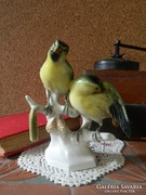 Volkstedt madárpár.