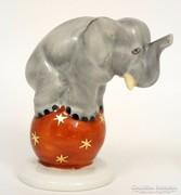 Herendi cirkuszi elefánt
