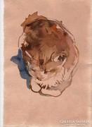 Ülő macska - csirkéző