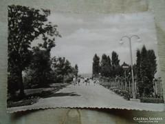 D146847 Balaton -Balatonaliga    képeslap
