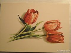 14 db különböző virágos képeslap