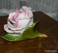 Herendi rózsa