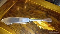 Ezüst tálaló kés