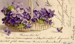 Névnapi üdvözlet: 1905. márc. 8.