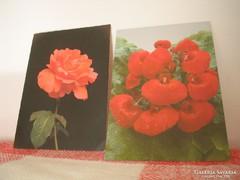Képeslap ---Virágos--Bélyeggel