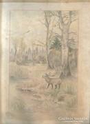 Bőgő szarvas Babocsay I.Aláírás1947.cerua,színesceruza papír
