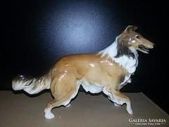 Hutschenreuther kutya