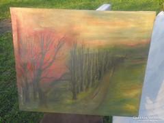 Szép színes festmény olaj vászon Oláh jelzéssel