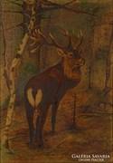 0M581 Zay jelzéssel : Szarvasportré 1907