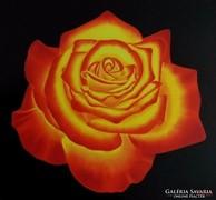 IRMA ENDREY: Rose painting; ENDREY IRMA: Virág festmény