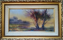 Czinege Zsolt : Tópart gyönyörű festménye negyed áron