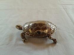Ezüstözött teknős