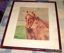 Ló és csikaja.Akvarell