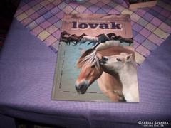 Horváthné Czene Ibolya.Bemutatkoznak a lovak