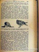 A Pesti Hírlap 1928 évi nagy naptára