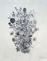 Molnár Gabriella: Mezei virágok