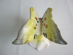 Drasche porcelán pillangó lepke
